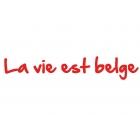 La Vie est Belge - Croisière maritime et fluviale