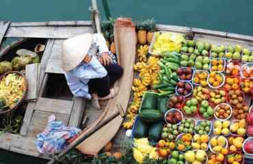 3 SEMAINES VOYAGE AU COEUR DU VIETNAM - <p>• Circuit approfondi dans le Nord et le Sud du Vietnam.<br />• Découverte de la culture des ethnies minoritaires et des paysages montagnards. (Thai, Dzao, Hmong, Tay, Zay, Xa, Phula et Ede)<br />• Repas typique et nuit chez les ethnies minoritaires.<br />• Nuit et croisière en jonque traditionnelle dans la Baie d'Halong.<br /><em>•</em>Excursion en barque à fond platsur la «Baie d'Halong Terrestre», en bateau au marché flottant deLong Xuyên …<br />• Activités diverses: promenade en cyclo-pousse, à pied, à vélo, à dos d'éléphant, en pirogue, excursion en bateau…<br /><em>•</em>Nuit et rencontre locale dans un gîte rural au Delta du Mékong.</p>