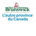 TOURISME NOUVEAU-BRUNSWICK - Tourisme institutionnel étranger