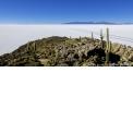 Circuit d'exception en Bolivie - <p><strong>SANTA CRUZ - PARC NATIONAL AMBORO - SUCRE - POTOSI - SALAR D'UYUNI - SUD LIPEZ - LAC TITICACA - LA PAZ</strong></p> <p>Venez découvrir le pays des lagunes multicolores, des neiges éternelles et des peuples indigènes. Bien plus qu'un voyage, c'est une véritable immersion dans un pays où les rencontres sont toujours authentiques et la nature encore vierge. La Bolivie est par essence le pays où résonne le plus fort l'âme indienne de l'Amérique Latine. Pour votre confort, vous dormirez dans des hôtels de charme 3* et 4*.</p> <p></p> <p><strong>15J/14N</strong> – A partir de <strong>2330 €</strong> par pers. (hors vol international)<br /> Pour 4 personnes en chambres doubles</p>