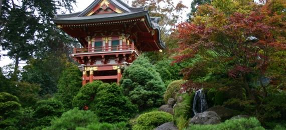 ASIE-japon-paysage-vinny-moreira