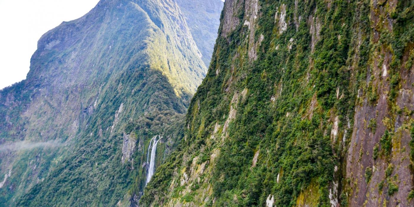 Nouvelle Zélande 3