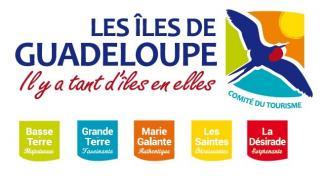 guadeloupe logo + etendard