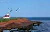 Photo de l'Ile du Prince Edouard au Canada