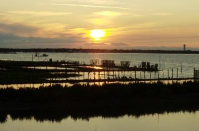 Photo de paysage de l'île de Ré - Gabriel Page