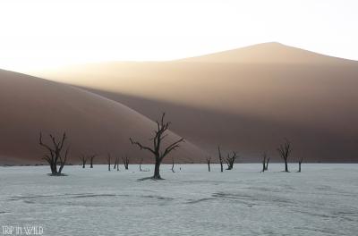 Paysages Namibie
