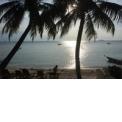 Les îles de Papouasie spécial festival des masques de Rabaul 2019 - <p><strong>Un voyage à la découverte des cultures des îles Papoues. </strong></p> <p><strong>Vous découvrez d'abord la surprenante et méconnue île de Bougainville, aux secrets longtemps cachés par une histoire mouvementée, avant d'assister au festival des Masques de Rabaul, l'occasion unique de découvrir les fameux dukduk Tolai en action et de découvrir la richesse des cultures de la Nouvelle-Bretagne. Puis vous rencontrer les Baining et assistez à leurs danses du feu. Enfin, c'est la Nouvelle-Irlande et la culture Malagan que vous explorez pour finir ce voyage dans les îles de Papouasie.</strong></p> <p></p> <p></p> <p></p> <p><strong>Points forts du circuit: </strong></p> <ul> <li>Le fabuleux Mask Festival de Rabaul et ses sorties de masques.</li> <li>Un festival privé de danses Baining. La découverte en profondeur de la culture Malagan.</li> <li>La découverte des trésors inconnus de Bougainville, l'île oubliée.</li> <li>Un guide français spécialiste de la Papouasie qui parle aussi</li> </ul>
