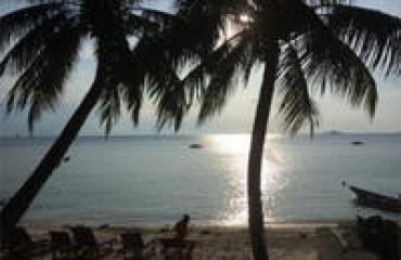 Colombie chez l'habitant  - <p>Danser la Cumbia sur la plage avec vos hôtes, se promener dans les ruelles ou sur les sentiers forestiers en leur compagnie, préparer les mets récoltés ou pêchés ensemble, prendre le temps de se parler après un bon repas, autour d'un feu… Autant de moments qui magnifient la découverte des splendeurs caribéennes: plages de sable blanc et poissons multicolores, rythmes tropicaux et fruits exotiques, ou encore cascades et forêts luxuriantes… Sans parler de Cartagena la belle ou de Santa Marta la pionnière.</p> <p>Deux semaines douces et intenses à vivre avec les familles indigènes et afro-descendantes qui vous accueillent et se font un plaisir de partager tout ce qui fait la richesse de leur culture et de leur histoire.</p> <p>Une expérience à vivre pleinement: plaisir du palais, des yeux et du cœur.</p> <p></p>
